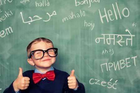 LYS yabancı dil konuları